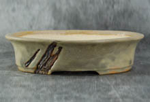 bonsai pot ref: 2173